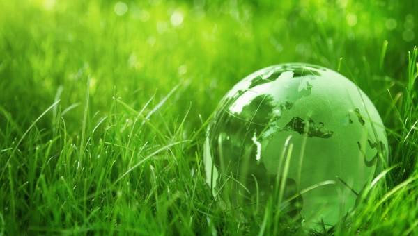 Keep the Earth Green!